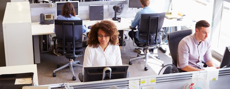 people sitting at desks working
